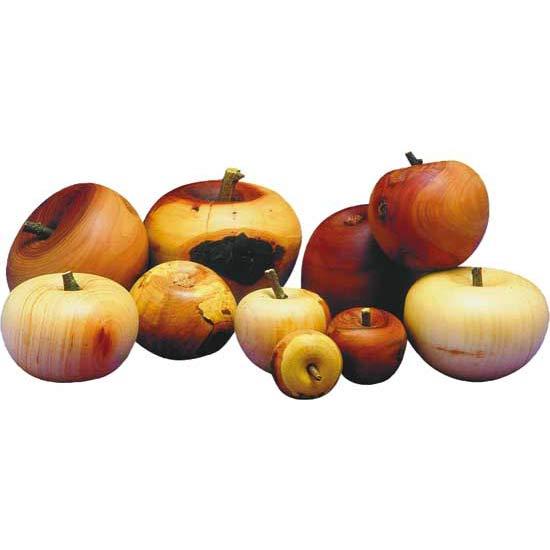 Dekoration apfel for Apfel dekoration